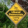 Poll Predicts Lib Dem Losses